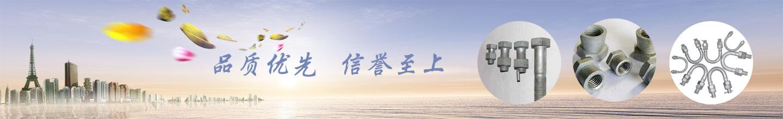 子页banner图